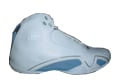 Air Jordan Player Exclusive 21 XXI