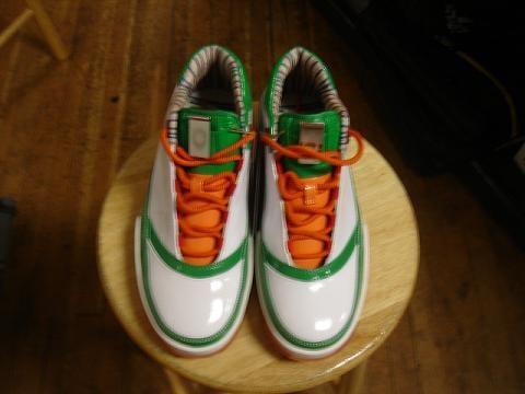 Nike Zoom Lebron Low ST