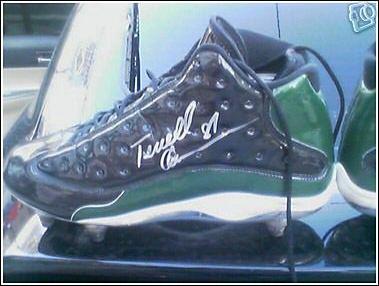 Air Jordan 13 Player Exclusive Terrell Owens