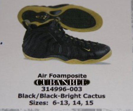 Nike Foamposite One Black/Cactus Catalog Picture