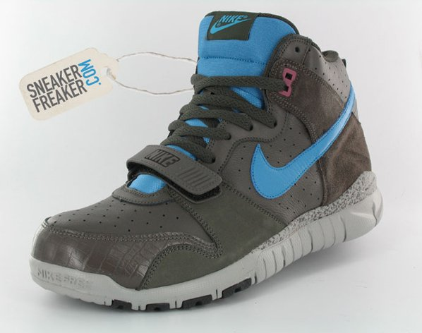 New Nike Trainer Dunk High