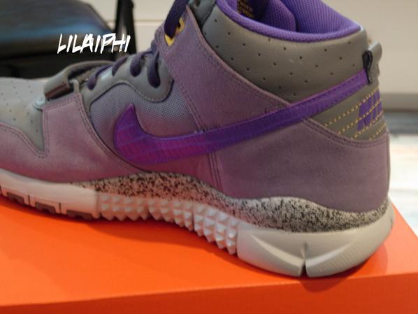Nike Trainer Dunk High Cool Grey/Purple