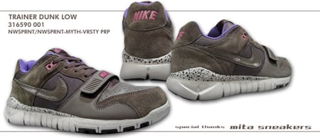 Nike Trainer Dunk Low Grey/Pink/Purple