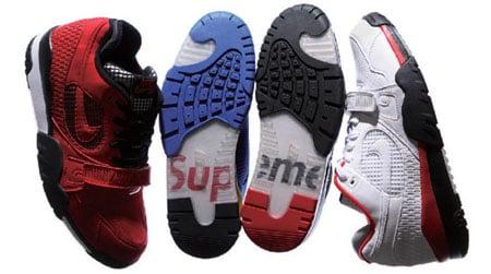 Supreme x Nike SB Trainer TW II