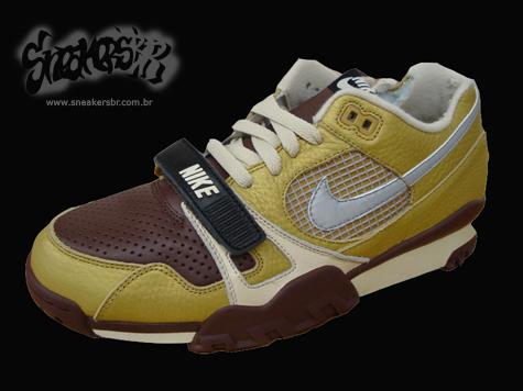 2008 Nike Trainer Dunk Low, SB Trainer Low, Trainer TW II