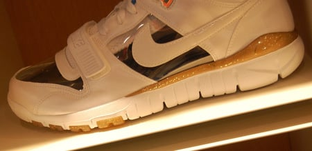 Nike Air Trainer Dunk Free x ESPO: Invisible Woman