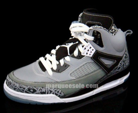 Air Jordan Spizike Cool Grey