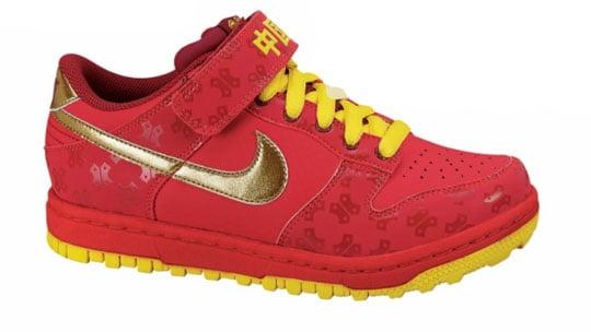 Nike Dunk Gyrizo BMX