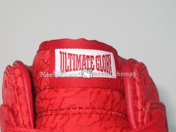 Nike Dunk High - Ultimate Glory