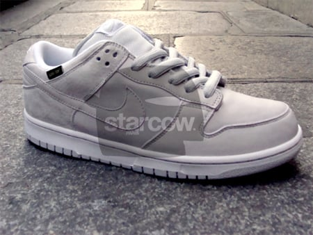 Medicom x Nike SB Dunk Low - Goretex