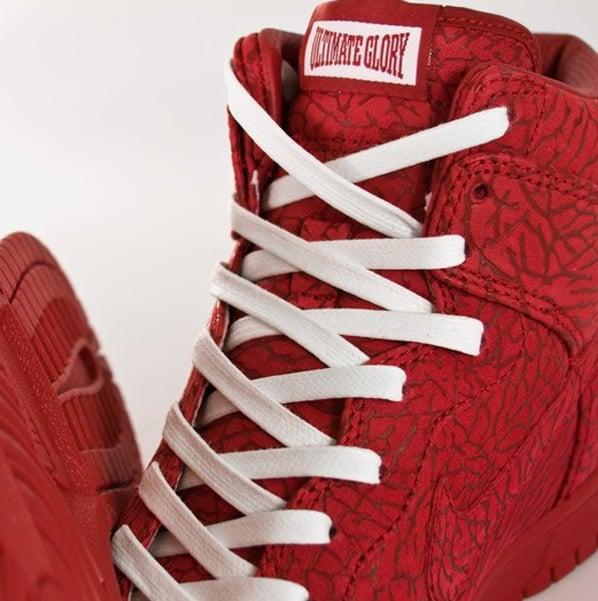 Nike Dunk High Premium - Ultimate Glory