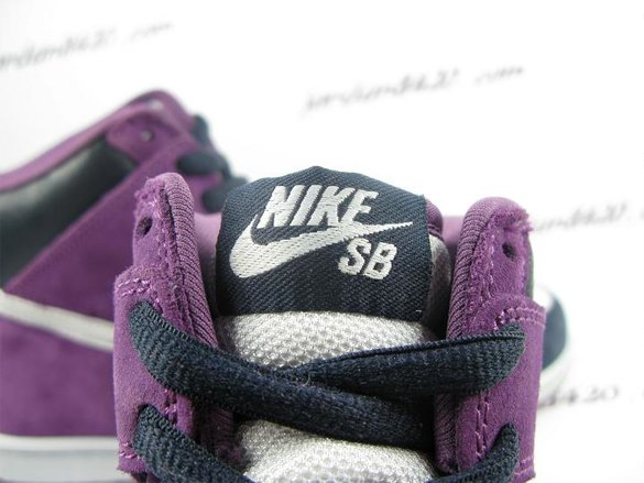 Nike Dunk High Premium SB - Unheaven's Gate9