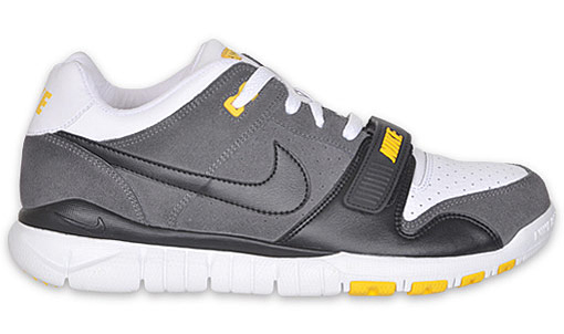 LIVESTRONG x Nike Trainer Dunk Low