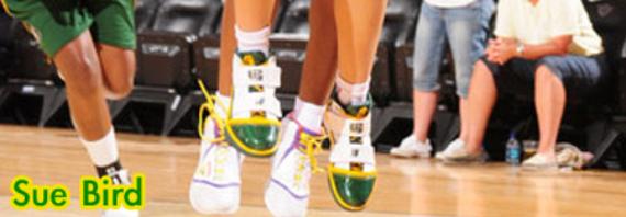 Nike Zoom Soldier 3 (III) - WNBA Player Exclusives (PE)