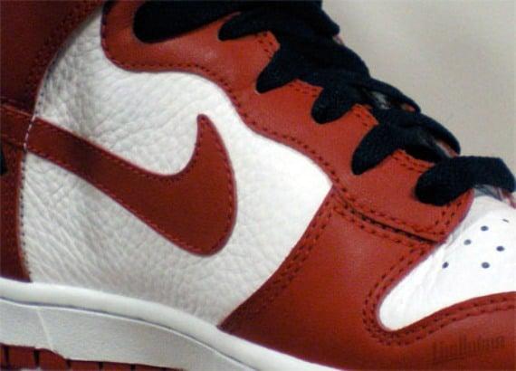 Nike Sportswear Dunks for 2010