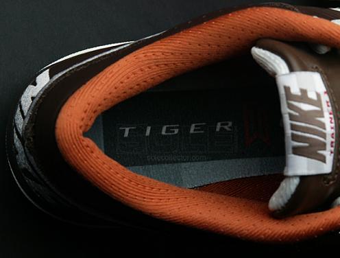 TigerAirTrainerI1