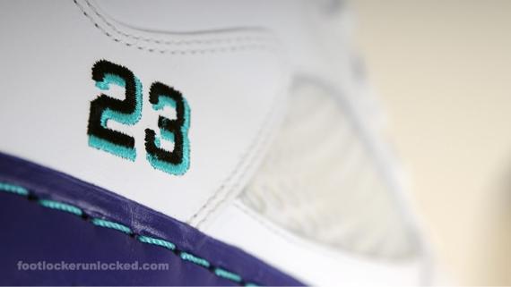 "Air Jordan Fusion V (5) ""Grape"" - July 2010 Release"