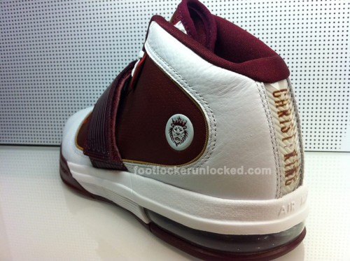 NikeZoomKobeV&LebronIVPEs6