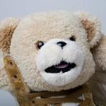 Jeremy Scott x adidas Originals 'Teddy Bears' Brown