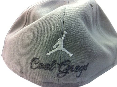 Nike Air Jordan x New Era Cool Grey XI (11) Fitted Cap