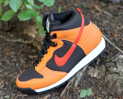 Nike ACG Lava Dunk - Fall 2011