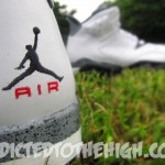 Mizzee-Customs-Air-Jordan-VI-(6)-Retro-'Cement'-&-'Raptor'-3