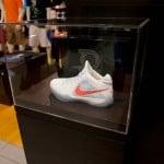 Nike-Zoom-KD3-(III)-Scoring-Champ-Home-PE-4