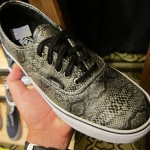 vans-syndicate-by-jason-dill-anthony-van-engelen-3