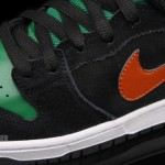nike-sb-dunk-high-jagermeister-fall-2011-4