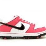 nike-dunk-low-ng-golf-new-images-7