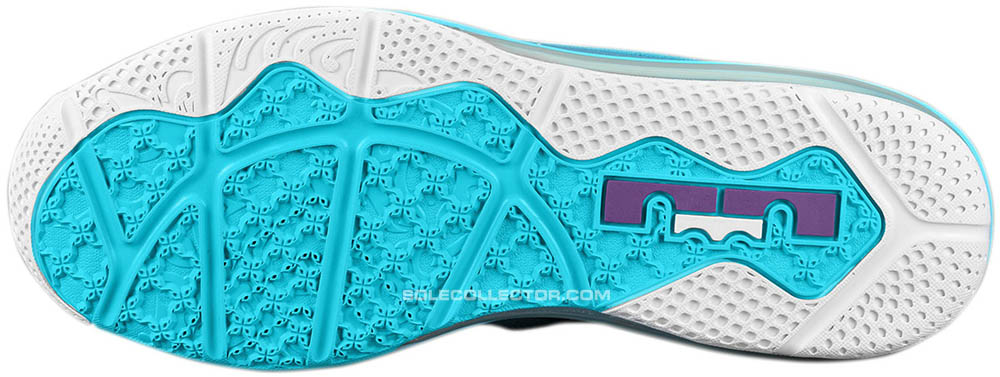 finest selection 2ff82 c6839 Nike LeBron 9 Low  Summit Lake Hornets