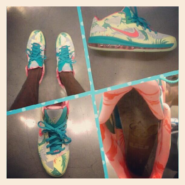 Nike LeBron 9 Low 'LeBronold Palmer'