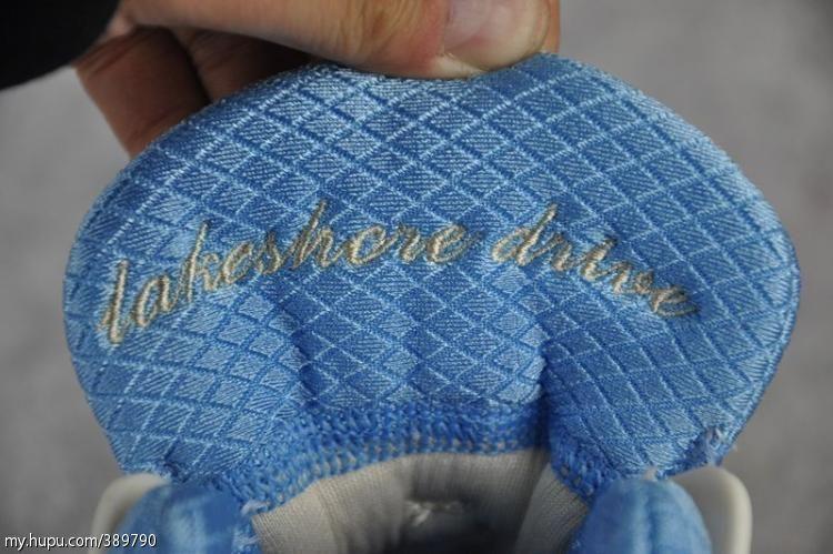 adidas Rose 3.0 Low 'Lakeshore Drive'