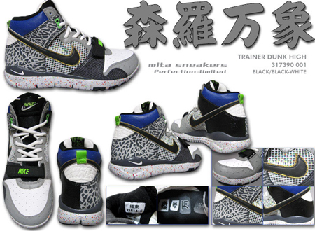 huge selection of 99412 2a0f8 Nike Trainer Dunk Free x Mita Detailed Look  SneakerFiles