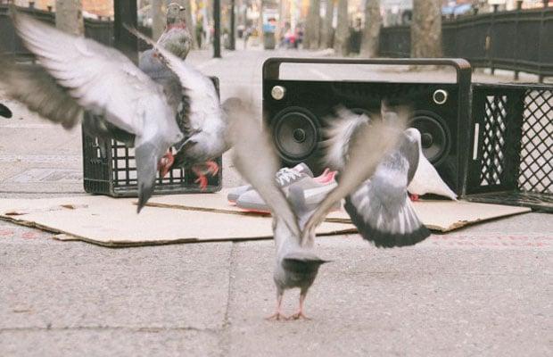 Staple x Puma Suede Pigeon 7