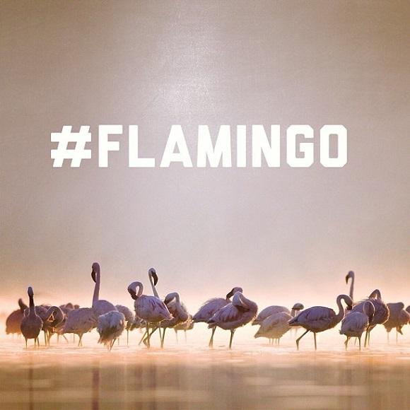 Teaser Ronnie Fieg x Asics Gel Lyte III FlamingoAC