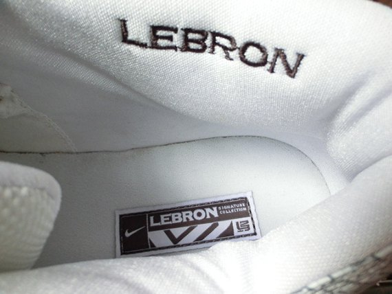 Nike Zoom LeBron II Low Akron PE on eBay