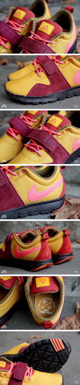 Iron Man Nike SB X Poler