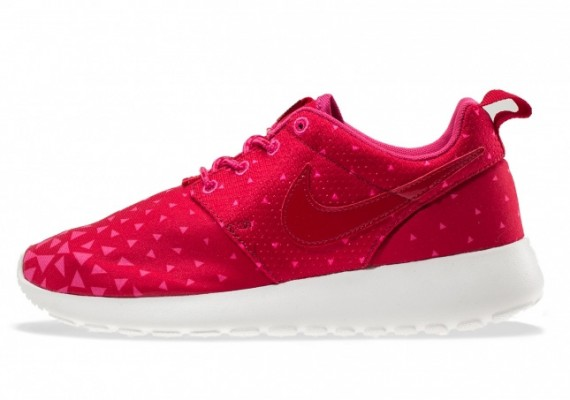 nike-roshe-run-gs-triangles-1