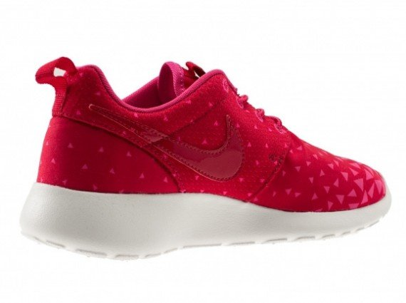 nike-roshe-run-gs-triangles-2