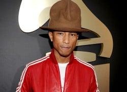 adidas Originals x Pharrell Williams Summer 2014 Collaboration