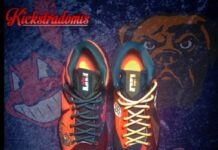 nike-lebron-x-10-clevelands-customs-kickstradomis