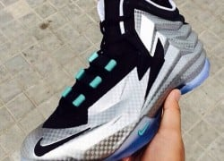 Nike Chukka Posite Sample