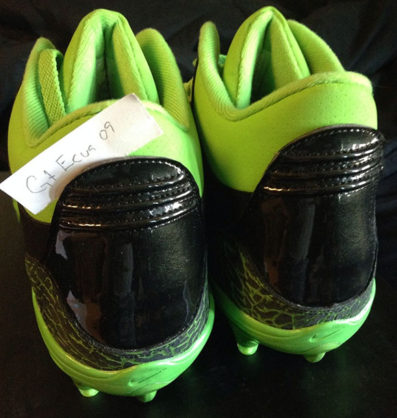Terrell Owens Seattle Seahawks Air Jordan 3 PE Cleats
