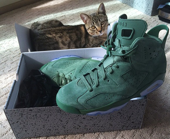 Macklemore Exclusive Air Jordan 6 in Green