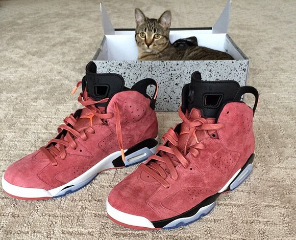 Macklemore Showing us another Air Jordan 6 Exclusive in Red