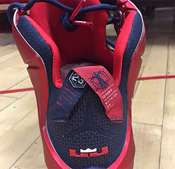 Nike LeBron 12 Arizona Wildcats PE