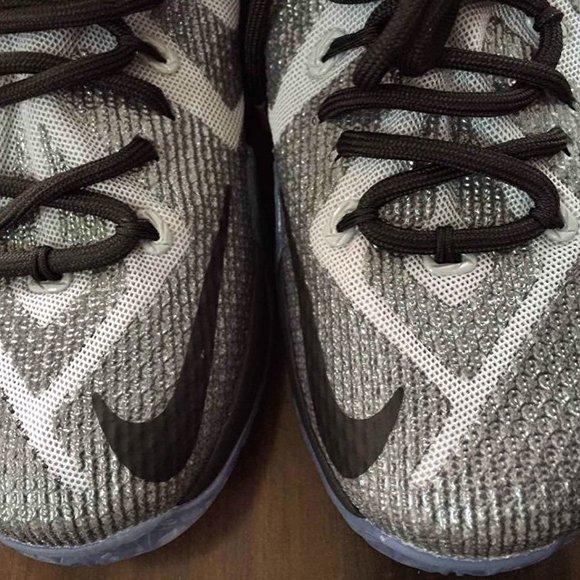 Nike LeBron 12 Griffin Winged Lion