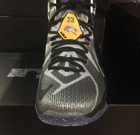 Nike LeBron 12 Flight