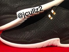 Air Jordan 15Lab12 Black White